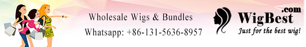 Wholesale Cheap Full Lace Front Wigs, Hair Bundles, Lace Frontals, Lace Closures from China vendors WigBest.com for Women Wigs Stores!